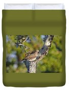Good Mourning Dove By H H Photography Of Florida Duvet Cover