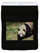 Gorgeous Black And White Giant Panda Bear Walking Duvet Cover