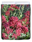 Gorgeous Cluster Of Red Phlox Flowers In A Garden Duvet Cover