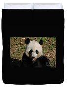 Gorgeous Face Of A Panda Bear Eating Bamboo Duvet Cover