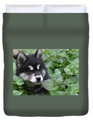 Gorgeous Fluffy Alusky Puppy Peaking Out Of Plants Duvet Cover