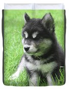 Gorgeous Fluffy Black And White Husky Puppy In Grass Duvet Cover