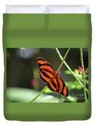 Gorgeous Orange And Black Oak Tiger Butterfly Duvet Cover