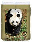 Gorgeous Sweet Giant Panda Bear Ambling Along Duvet Cover