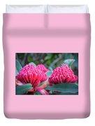 Gorgeous Waratah -floral Emblem Of New South Wales Duvet Cover
