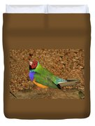 Gouldian Finch Duvet Cover