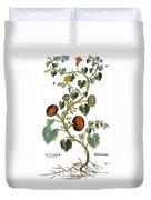 Gourd, 1735 Duvet Cover