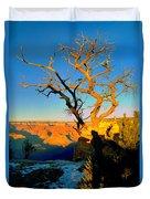 Grand Canyon National Park Winter Sunrise On South Rim Duvet Cover