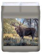 Grand Teton Moose Duvet Cover
