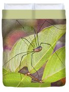Grandaddy Long Legs Duvet Cover