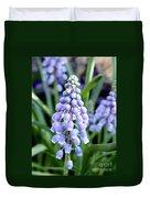 Grape Hyacinths Closeup Duvet Cover
