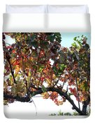 Grape Vine In Autumn Duvet Cover
