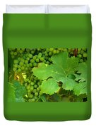 Grape Vine Heavy With Green Grapes Duvet Cover