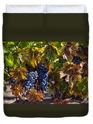 Grapes Of The Napa Valley Duvet Cover