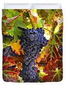 Grapes On Vine In Vineyards Duvet Cover