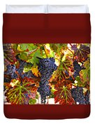 Grapes On Vine In Vineyards Duvet Cover