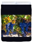 Grapes Ready For Harvest Duvet Cover