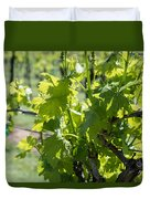 Grapevine In Early Spring Duvet Cover