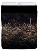 Grass At Sunset Duvet Cover