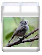 Gray Grey Bird 052814aa Duvet Cover