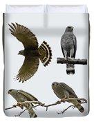 Gray Hawk Collage Duvet Cover