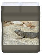 Gray Iguana Sunning And Resting On A Large Rock Duvet Cover