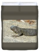 Gray Iguana With Long Talons Sitting On A Rock Duvet Cover