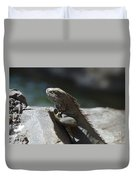 Gray Iguana With Spines Along His Back On A Rock Duvet Cover