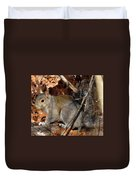 Gray Squirrel Duvet Cover