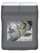 Gray Wolf 7 Duvet Cover