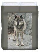 Gray Wolf Stare Duvet Cover
