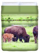 Grazing Bisons Duvet Cover