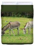 Grazing Donkeys Duvet Cover