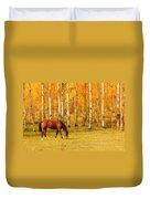 Grazing Horse In The Autumn Pasture Duvet Cover