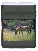 Grazing Wild Mustang  Duvet Cover