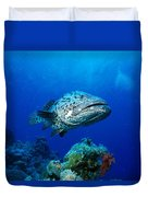 Great Barrier Reef Duvet Cover by Peter Stone - Printscapes