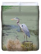 Great Blue Heron Near Pond Duvet Cover