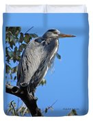Great Blue Heron Perched Duvet Cover