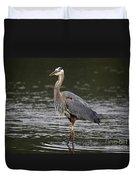 Great Blue Heron Portrait Duvet Cover by Sue Harper