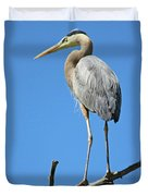 Great Blue Heron Watching And Waiting Duvet Cover