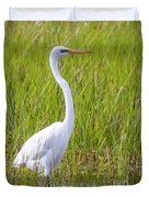 Great Egret In The Spring  Duvet Cover