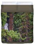 Great Gray Owl Perched Duvet Cover