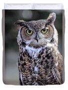 Great Horned Owl IIi Duvet Cover