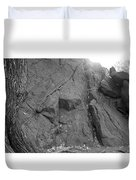 Great Mountains Of Central Park In Black And White Duvet Cover