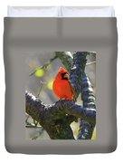 Great  Perch Male Northern Cardinal Duvet Cover