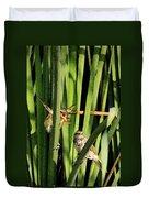 Great Reed Warbler Duvet Cover