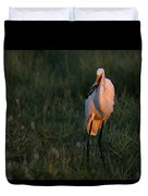 Great White Egret With Armored Catfish Duvet Cover