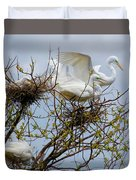 Great Egrets, Nest Building Duvet Cover