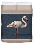 Greater Flamingo Duvet Cover