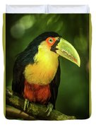 Green-billed Toucan Perched On Branch In Jungle Duvet Cover